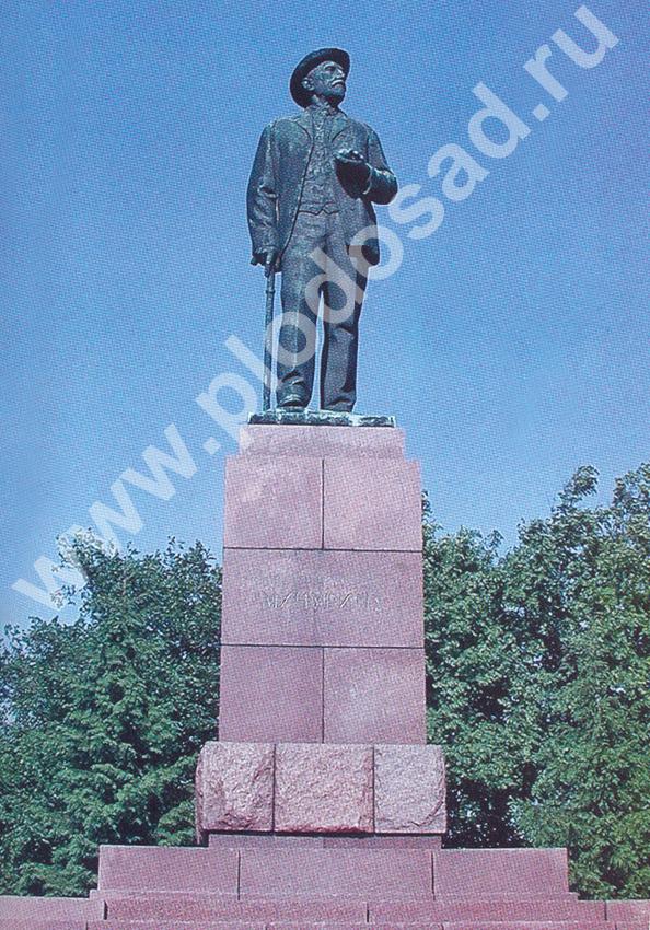 Памятник_Мичурину