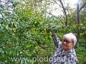 Ирина Сергеевна Исаева в своём саду