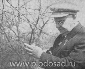М. А. Лисавенко в 60-е годы
