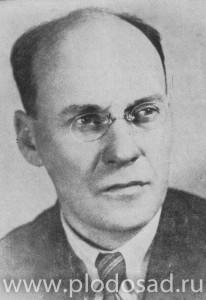 М. А. Лисавенко, снимок 30-х годов