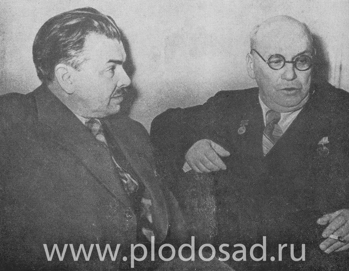 М. А. Лисавенко и писатель Л. М. Леонов, Москва, 50-е годы
