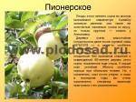 sorta-yabloni-isaeva-15