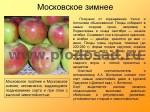 sorta-yabloni-isaeva-41