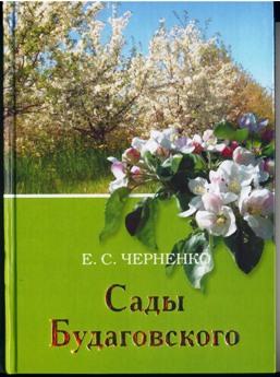 Обложка книги Е. С. Черненко о В. И. Будаговском