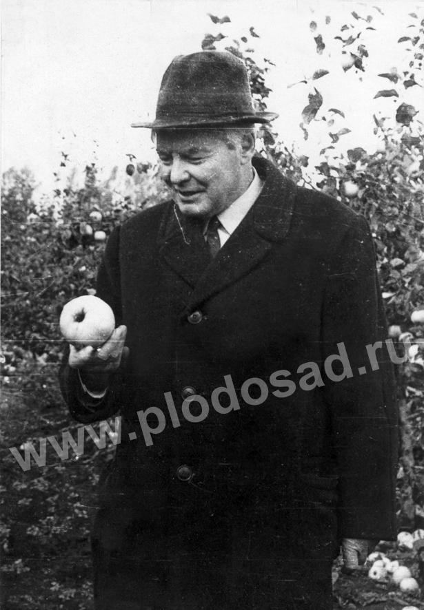 В.И.Будаговский в саду3