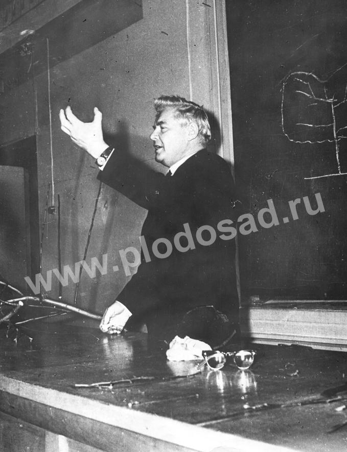В_И_Будаговский на лекции
