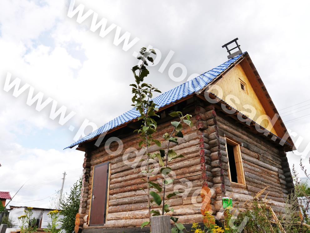 Яблоня и дом