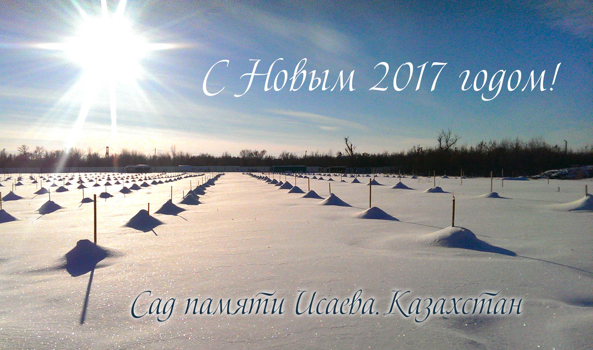s-novyim-godom-2017