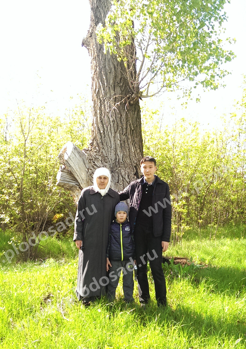 Мама с внуками