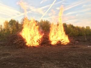 Сжигая сухостой, избавляемся от мусора