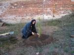 Вознесенский Оршин монастырь. Игумения сажает Райское яблочко