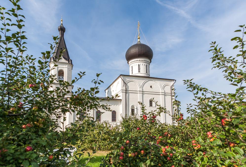 Вознесенский Оршин монастырь. Вид сада на 11 год