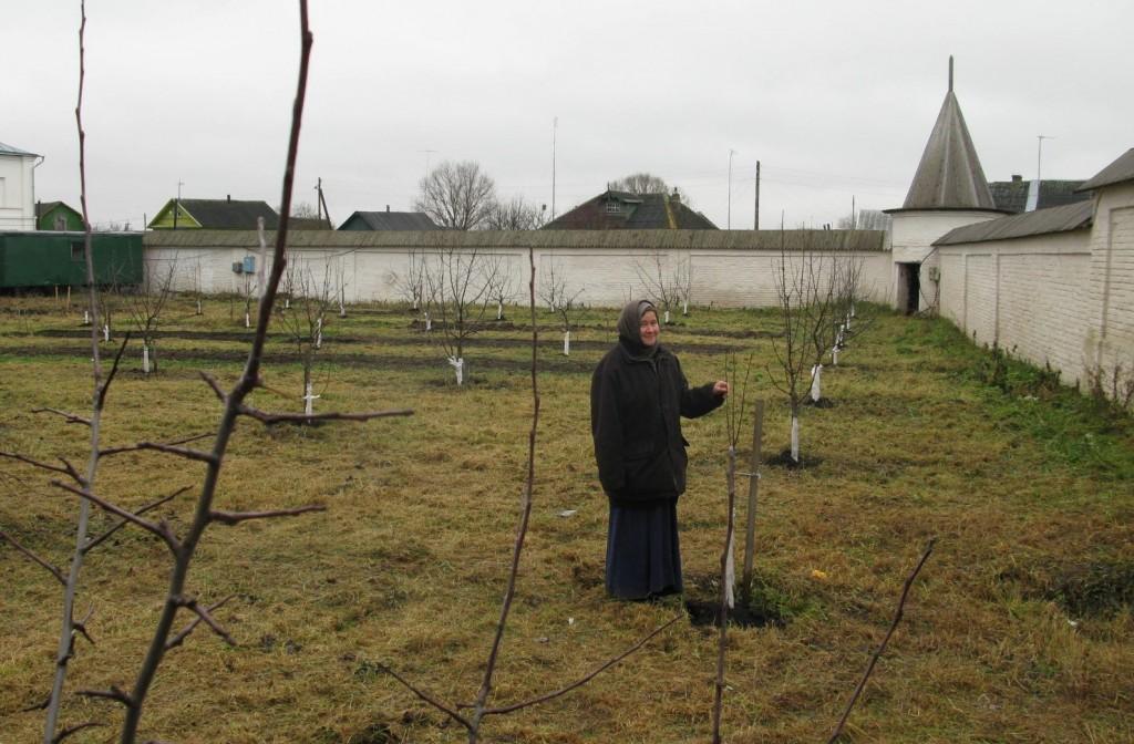 Вознесенский Оршин монастырь. Вид сада на 3 год