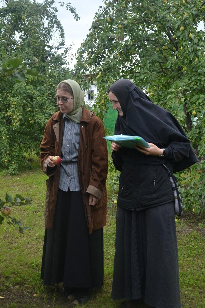 В саду Свято-Екатерининского монастыря: монастырские сортоиспытатели